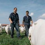 De boeren van Mekkerstee in het veld met geiten