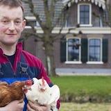 Jan Meijer houd zijn kippen vast