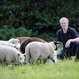 Bauke Bossink op het land met zijn schapen