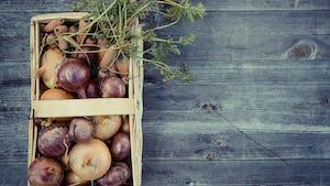 duurzaam koken met seizoensgebonden groenten