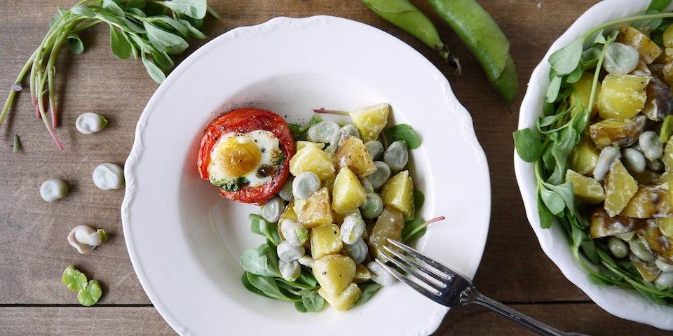 2455 Met Ei Gevulde Tomaat Met Aardappeltuinbonenzomerpostelein Salade