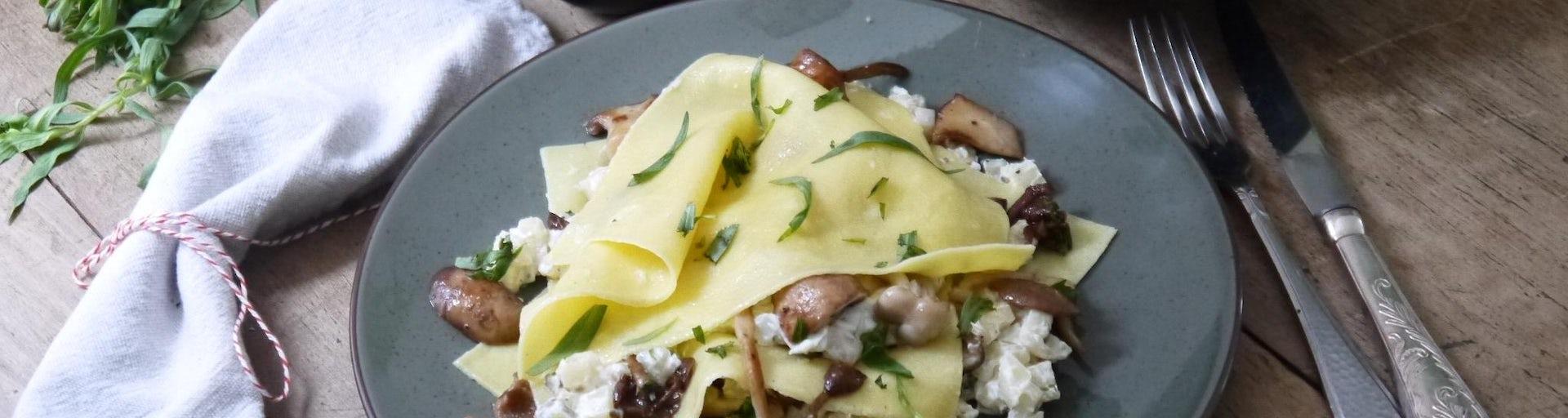 Wk 47 open paddenstoelen lasagne FP