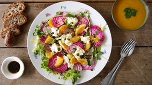 Salade met chioggia en sinaasappel en mozzarella   Maaltijdbox recepten